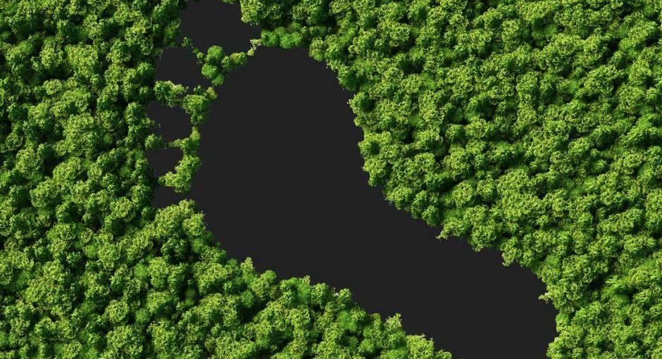 رد پای کربنی هوش مصنوعی